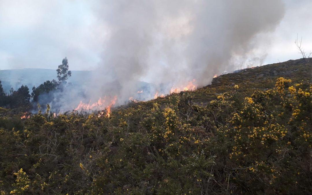Investigado un veciño de Dozón como presunto responsable dun incendio forestal na zona